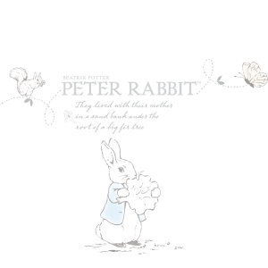 PETER RABBIT-01